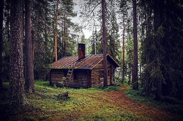 Chata v lese
